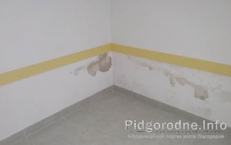 грибок на стінах
