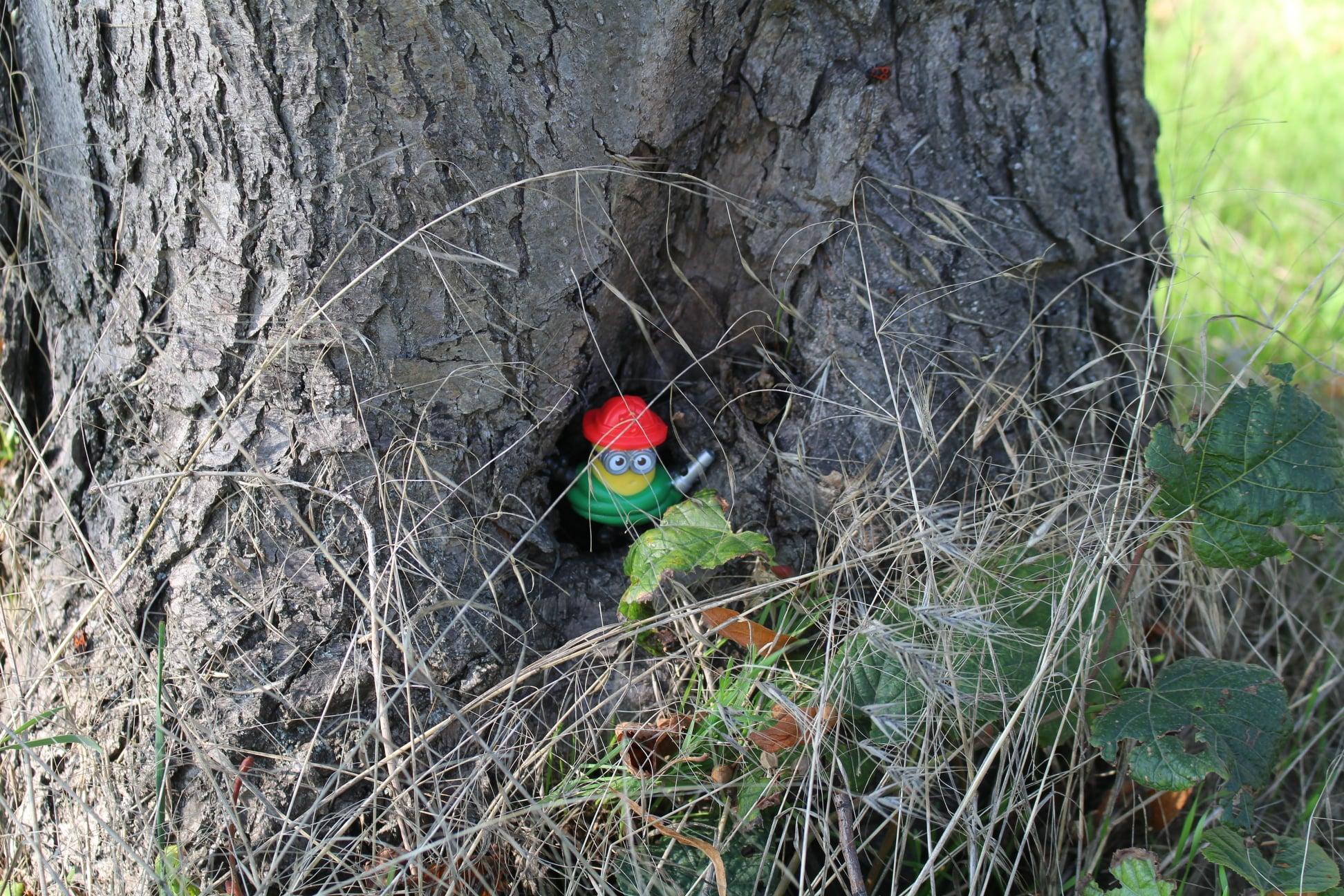 Знайдіть іграшки – отримайте подарунок: у парку Коваля організували новий квест
