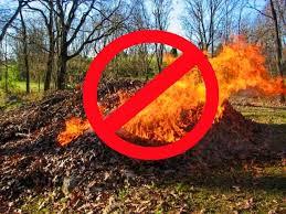 Мешканців Дніпропетровщини попереджають – за вогнища з опалого листя передбачені штрафи