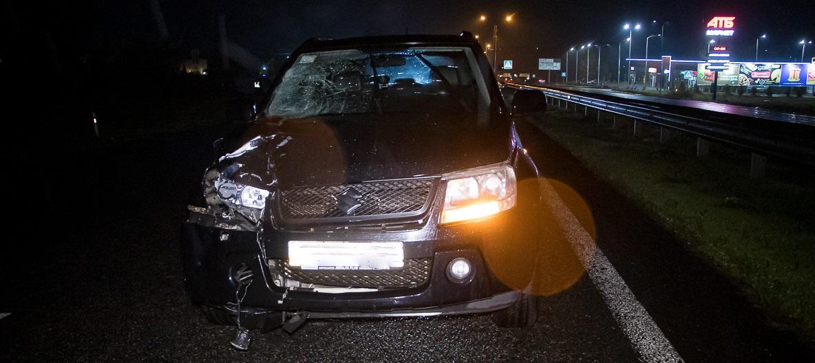 Під Дніпром Suzuki на смерть збив жінку: поліція просить впізнати загиблу (фото 18+)